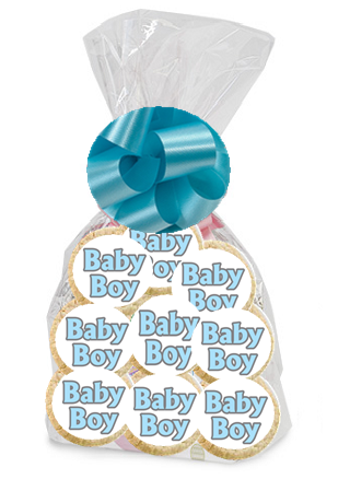 Order / Send Wild Baby Boy Party Favor / Gift Decorated Sugar Cookies